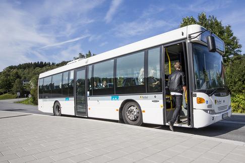 Buss i Nordland.